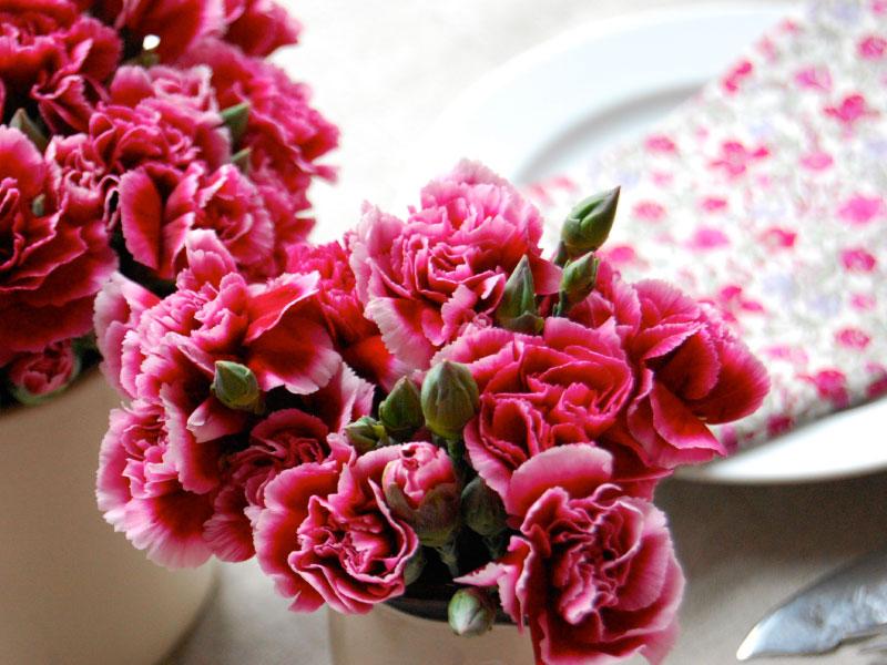 webimgflowers06