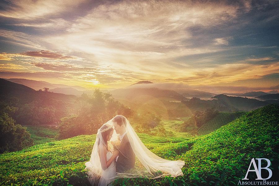 Absolute Bride 05